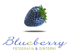 Blueberry Studio Logo